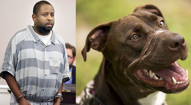 """Abuser of """"Caitlyn the dog"""" DENIED parole – He will serve the rest of his sentence!"""