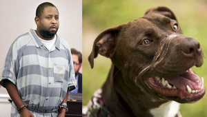 "Abuser of ""Caitlyn the dog"" DENIED parole – He will serve the rest of his sentence!"