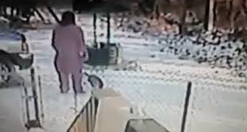 Woman Kicks Snow Onto A Cat's Face And Karma Strikes Back
